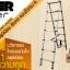บันไดอลูมิเนียม ยืดหดได้ Extend Ladder รุ่น IN-A07 thumbnail 6