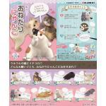 <สอบถามราคา> ชุดโมเดล ของเล่นจิ๋ว Re-ment ชุดแมวขี้อ้อน