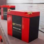 แบตเตอรี่ลิเธียม W-Standard รุ่น WEX6L36-MF (W-Standard Lithium Battery WEX6L36-MF)