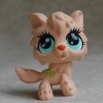 แมว สีน้ำตาล #2278 (หายาก)